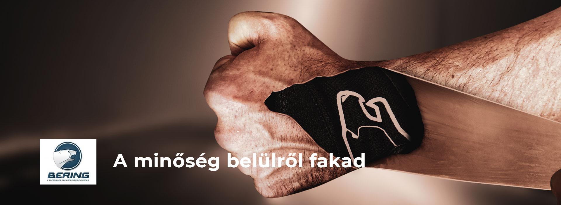 Bering-kampany